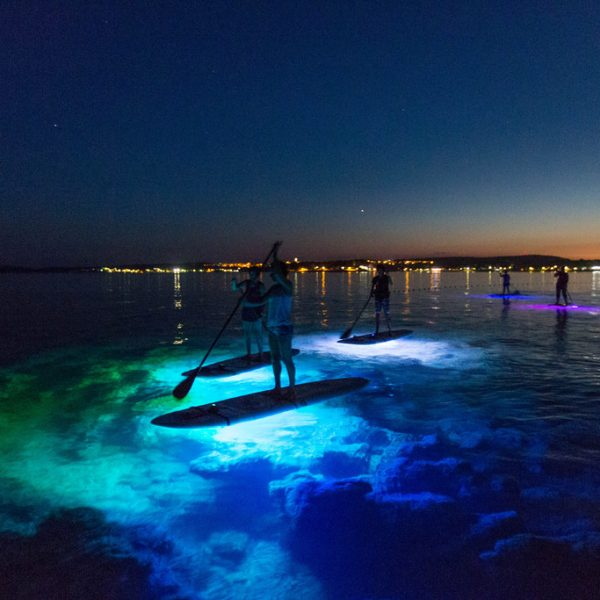 SUP Glow Night Tour