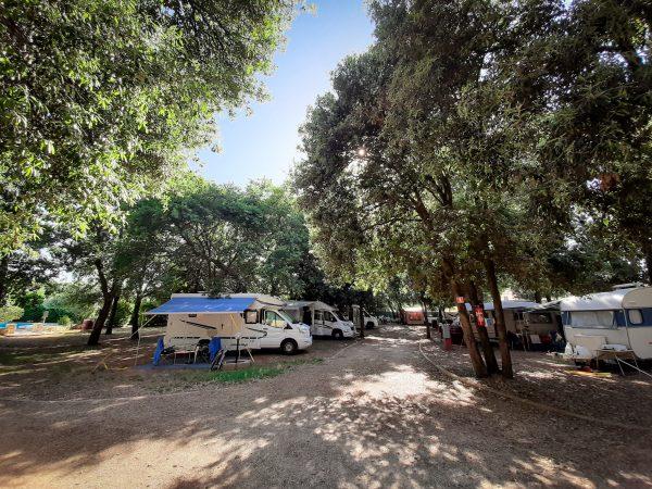 Camp Diana