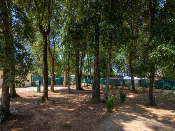 Camp Centinera
