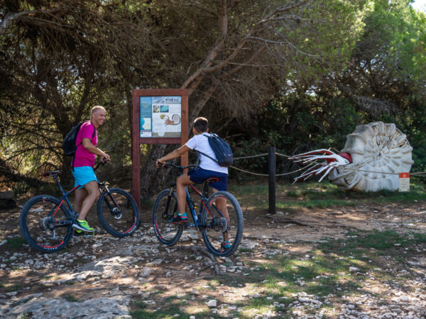 316 – bike staza Premanturka