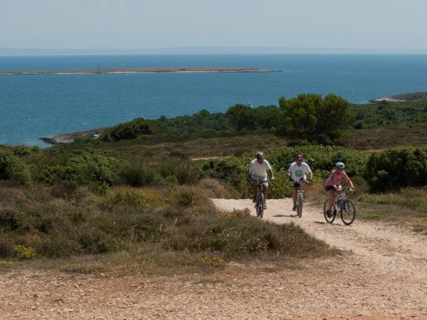 318 – bike route Orhideja