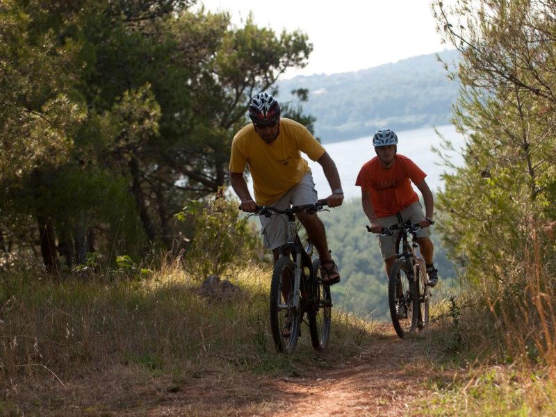 319 – bike route Banjolka