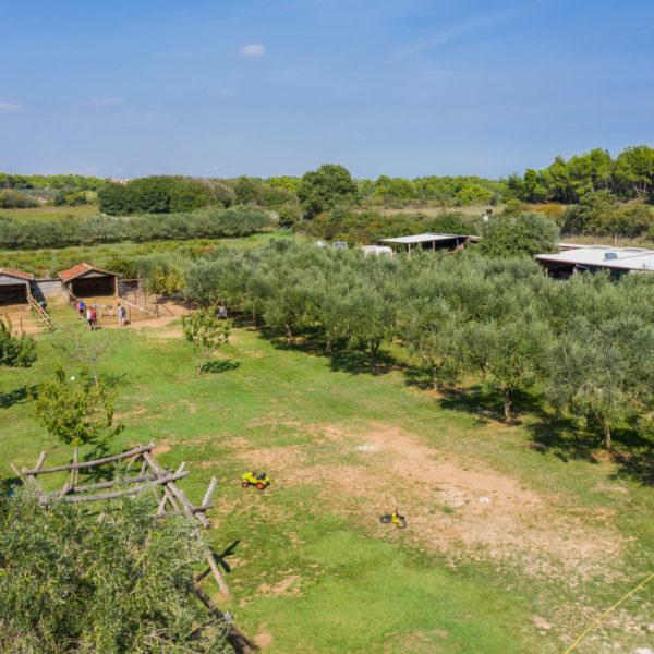 Istrian Farm